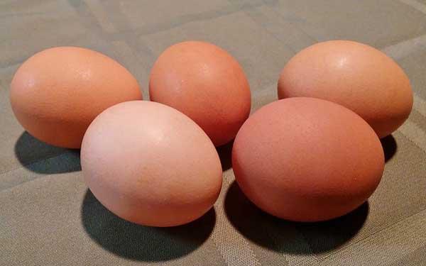 egg-mask-for-hair